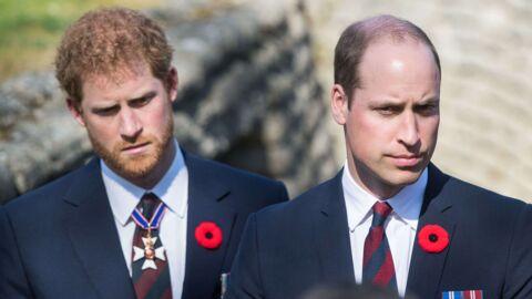 Lady Diana: Harry et William s'expriment dans deux documentaires hommage à leur mère