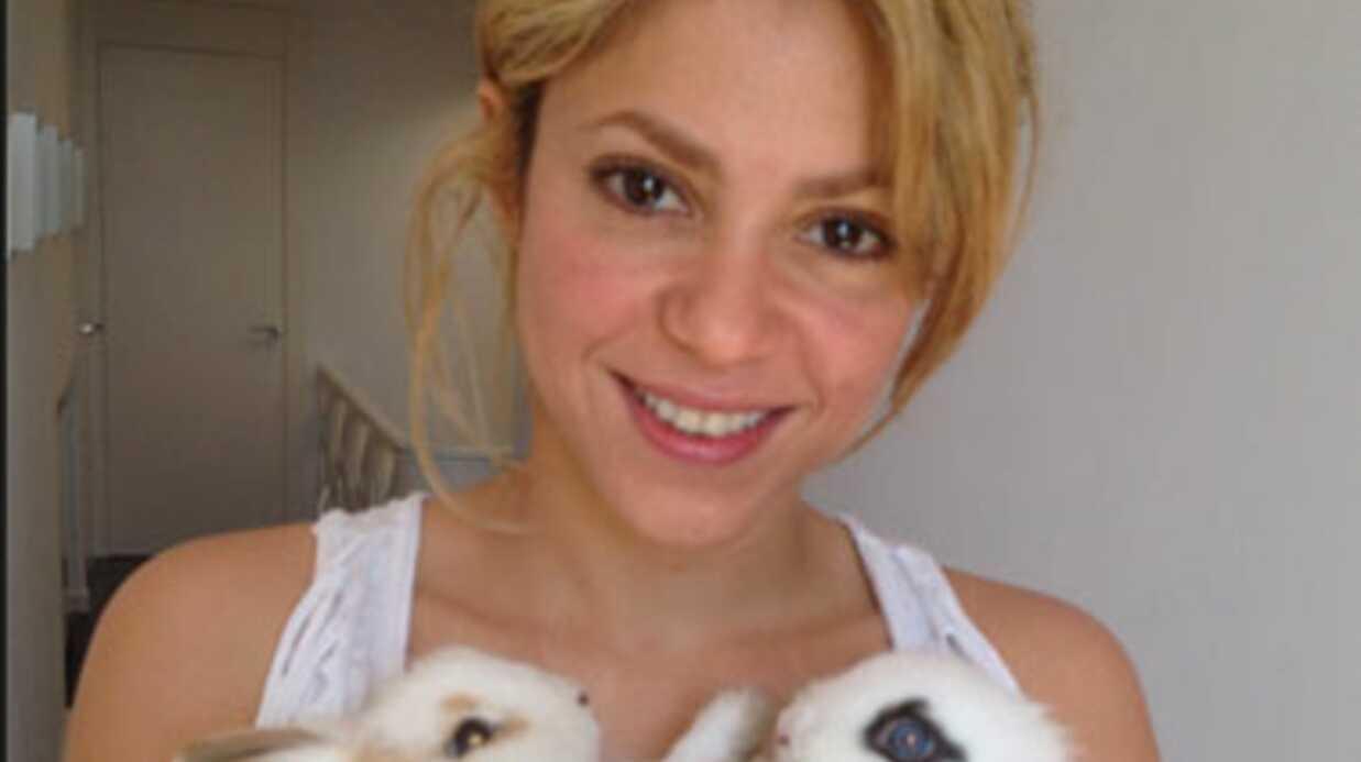 Shakira pousuivie en justice par son ex