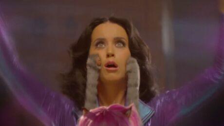 VIDEO La pub délirante de Katy Perry avec des chats à perruques