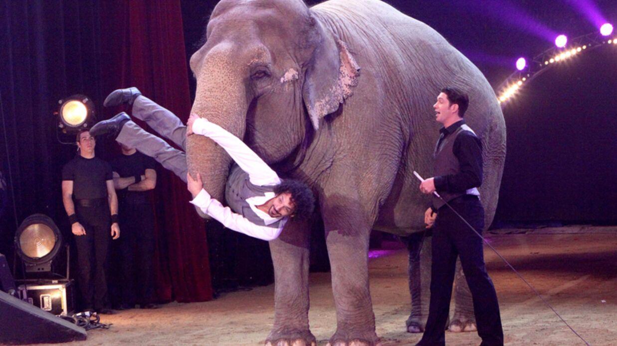 DIAPO Les people en artistes de cirque sur la piste d'Alexis Gruss