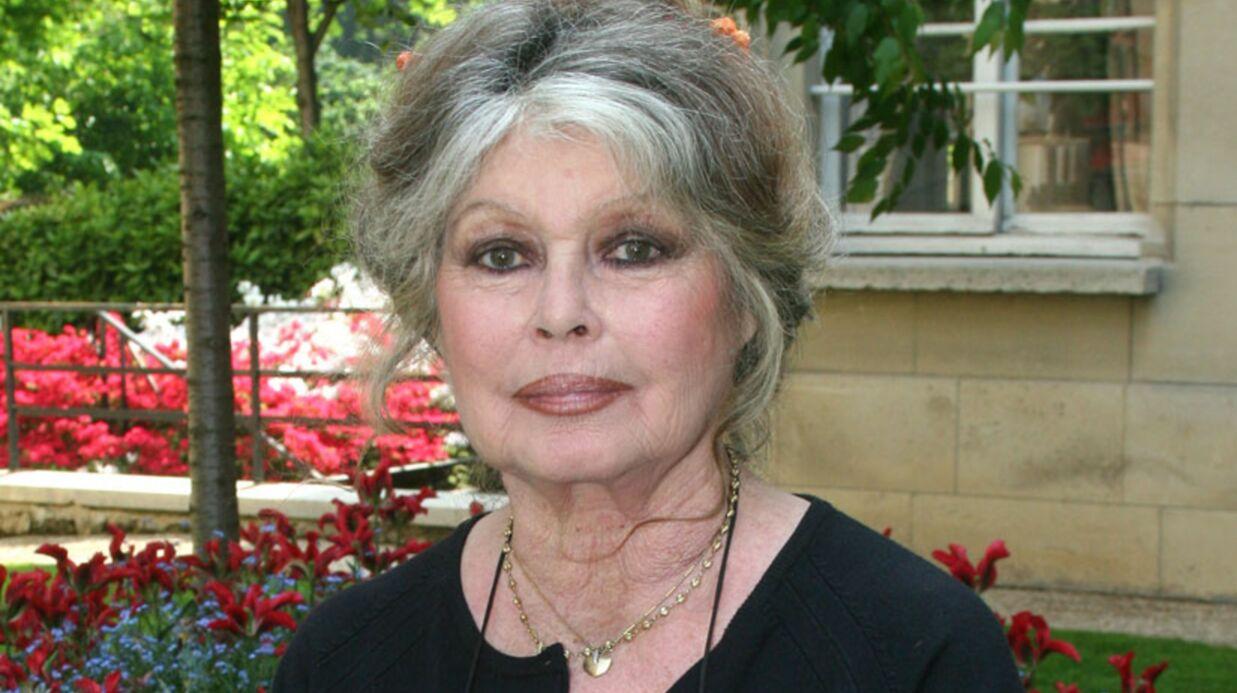 Brigitte Bardot vend sa voiture sur eBay