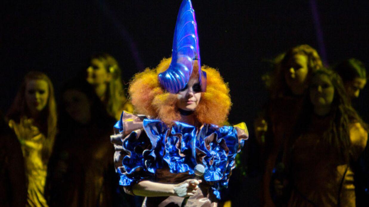 Björk: mille dollars pour une place de concert