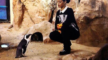 DIAPO Rihanna accuse un manchot de lui avoir volé son look