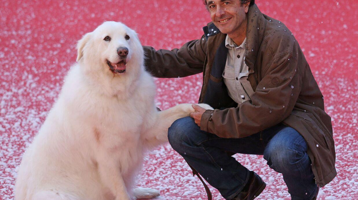 Nicolas Vanier répond aux accusations de maltraitance sur ses chiens