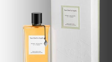 Une ode à la rose par Van Cleef & Arpels