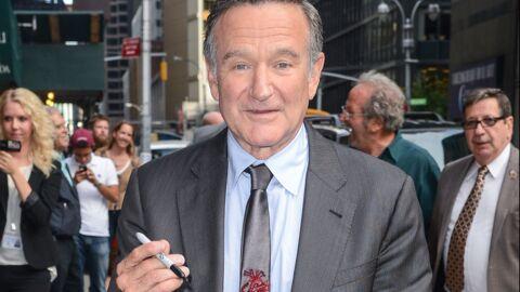 Nintendo pourrait rendre hommage à Robin Williams dans Legend of Zelda
