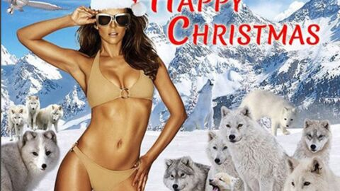 Liz Hurley: sa drôle de carte de Noël avec un bikini sexy et des loups…