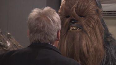 «Sac à m*rde de Wookie!»