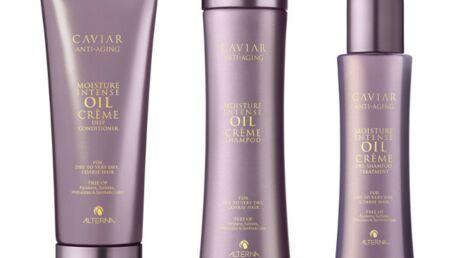 Alterna Haircare agrandit sa gamme Caviar
