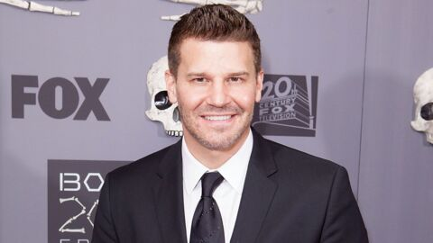 VIDEO David Boreanaz (Bones) nous fait visiter sa sublime maison de Los Angeles
