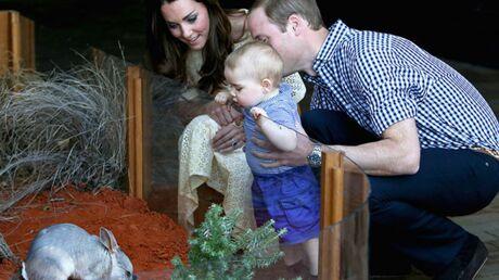 PHOTOS Le Prince William et Kate Middleton ont emmené leur petit George au zoo