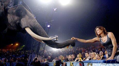 Stéphanie de Monaco prête à recueillir deux éléphantes à Monaco