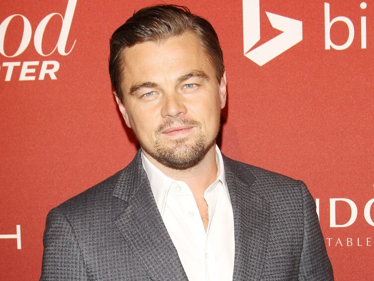 Leonardo DiCaprio décrit sa femme idéale