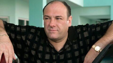 Mort de James Gandolfini, le parrain des Soprano, à 51 ans