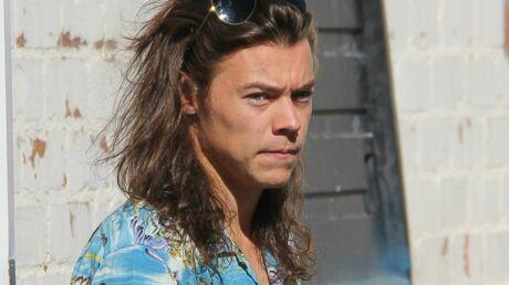 Harry Styles a de nouveaux objectifs de carrière