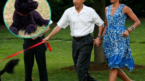 Michelle et Barack Obama présentent Sunny, leur nouveau chien