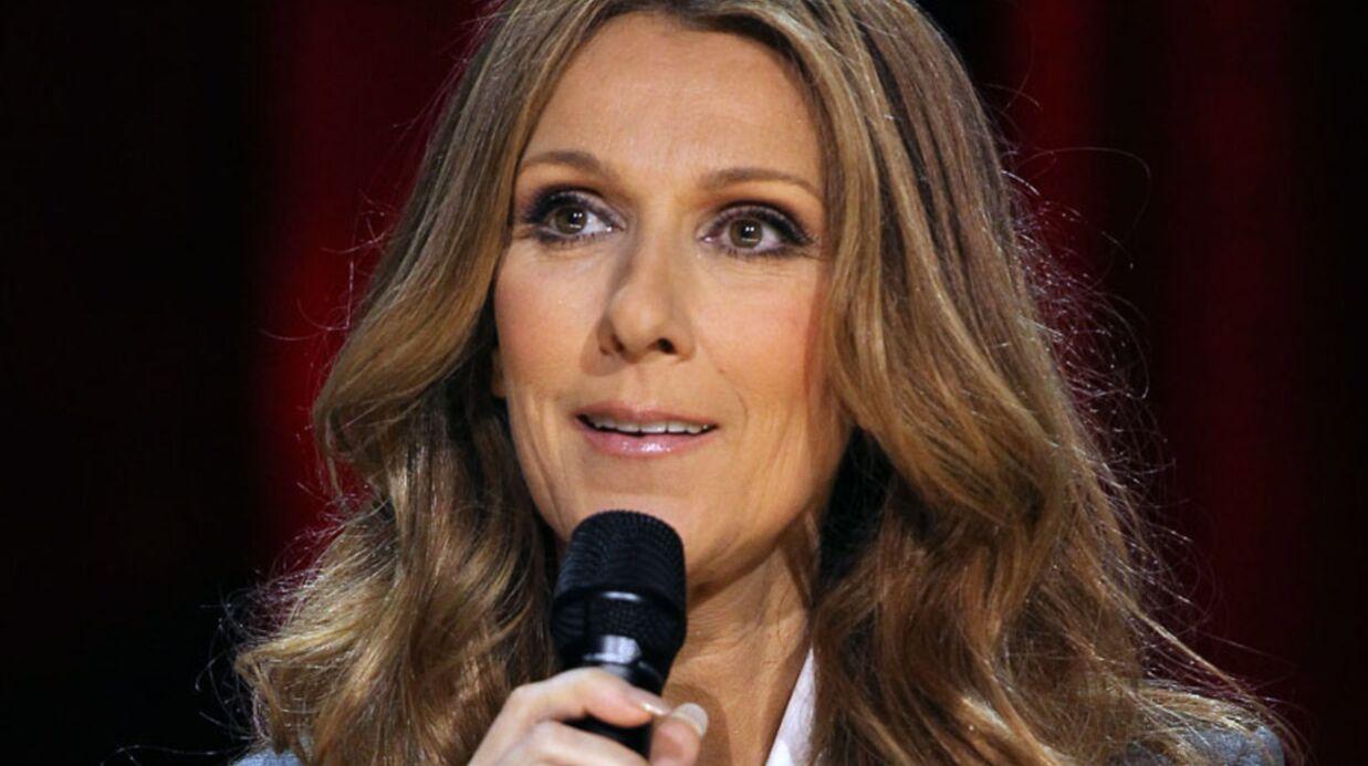 Céline Dion: un album en français pour 2012 avec Luc Plamondon