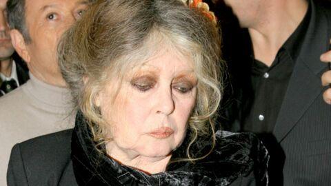 Corrida: Brigitte Bardot furax contre les «lâches» du Conseil constitutionnel