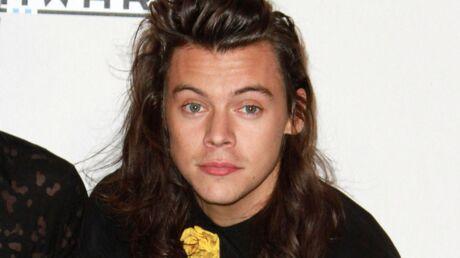 Harry Styles (One Direction) déjà acclamé pour ses talents d'acteur