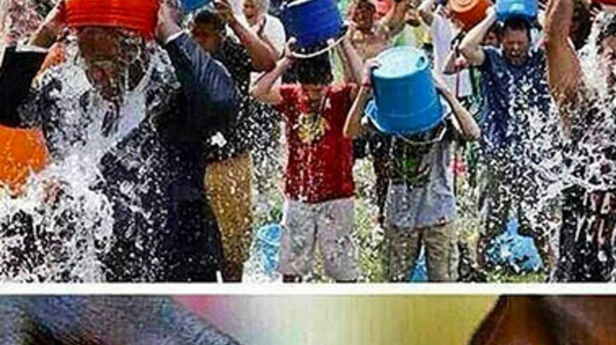Booba refuse de participer au Ice Bucket Challenge