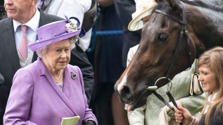 Elizabeth II:  son cheval était dopé