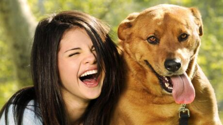 selena-gomez-justin-bieber-adoptent-un-chien-abandonne