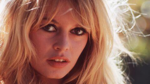 Brigitte Bardot a mené la vie dure à Laurent Delahousse