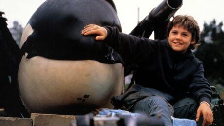 PHOTOS Le petit garçon héros de Sauvez Willy a bien changé!