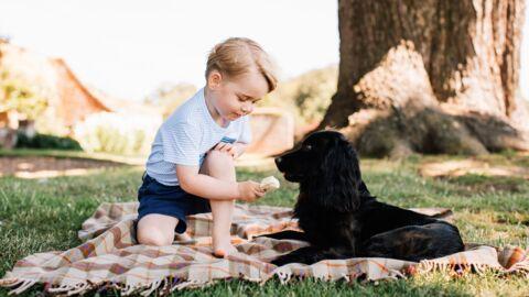 Prince George: à peine 3 ans et déjà au coeur d'une polémique