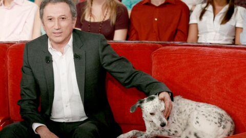 Michel Drucker fait le deuil d'Hilda avec un nouveau chien