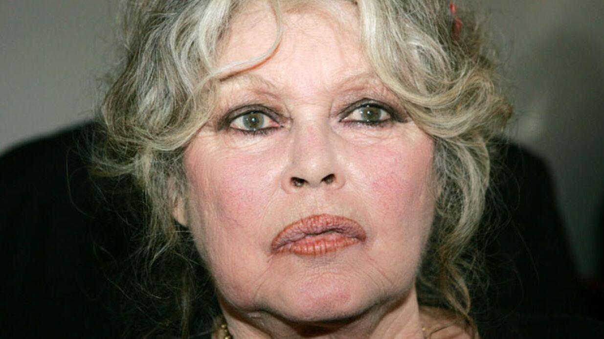 Brigitte Bardot n'a vu ses petites-filles qu'une seule fois dans sa vie