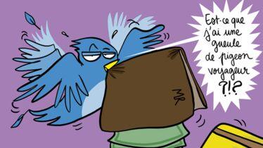 Le bel oiseau bleu