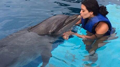 VIDEO Kim Kardashian réalise un rêve: nager avec des dauphins