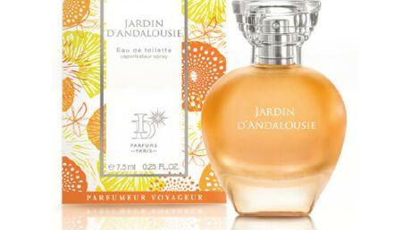 Un nouveau carnet de voyage avec ID Parfums