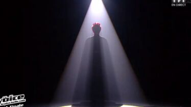 Qui pour The Voice Tour?