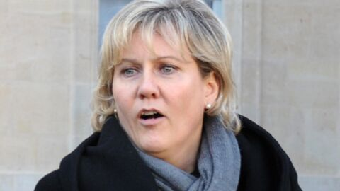 Nadine Morano donne sa version de l'accident via Twitter