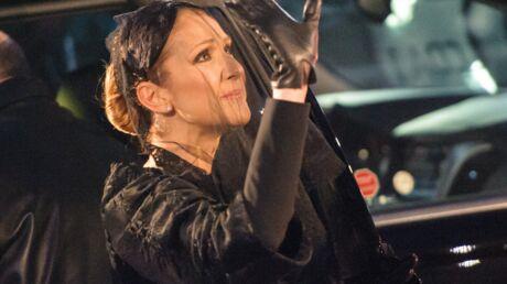 Les Enfoirés ont rendu hommage à René Angélil et Céline Dion