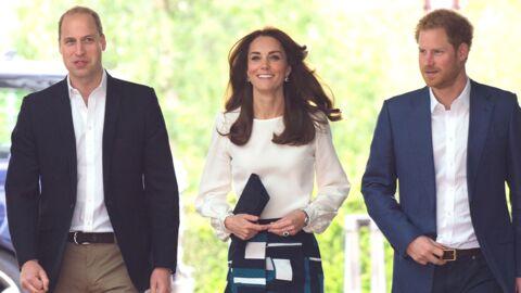 William, Harry et Kate Middleton: par peur de Zika, ils n'iront pas aux JO de Rio