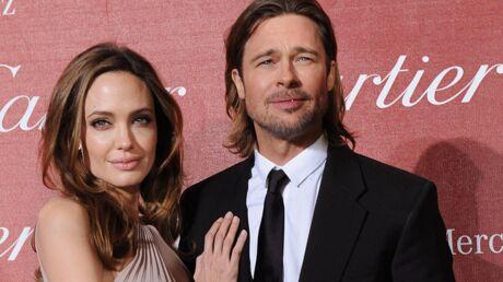 Brad Pitt et Angelina Jolie accusés de détruire l'environnement