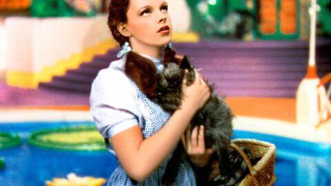 Judy Garland: alcool, drogues, tentative de suicide par le feu… son agent révèle tout