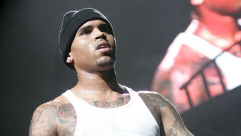 Chris Brown : un business de chiots qui fait scandale