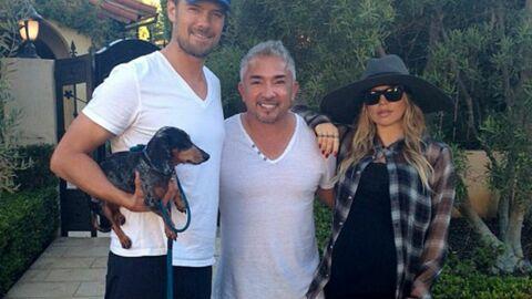 Fergie (Black Eyed Peas) prépare son chien à l'arrivée du bébé avec l'aide d'un psy