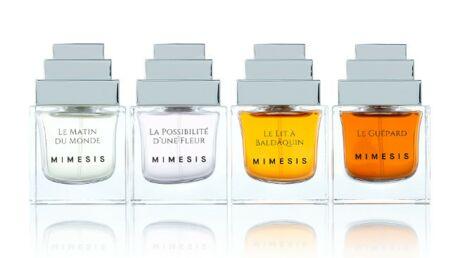 Mimesis réconcilie parfum et beauté des cheveux