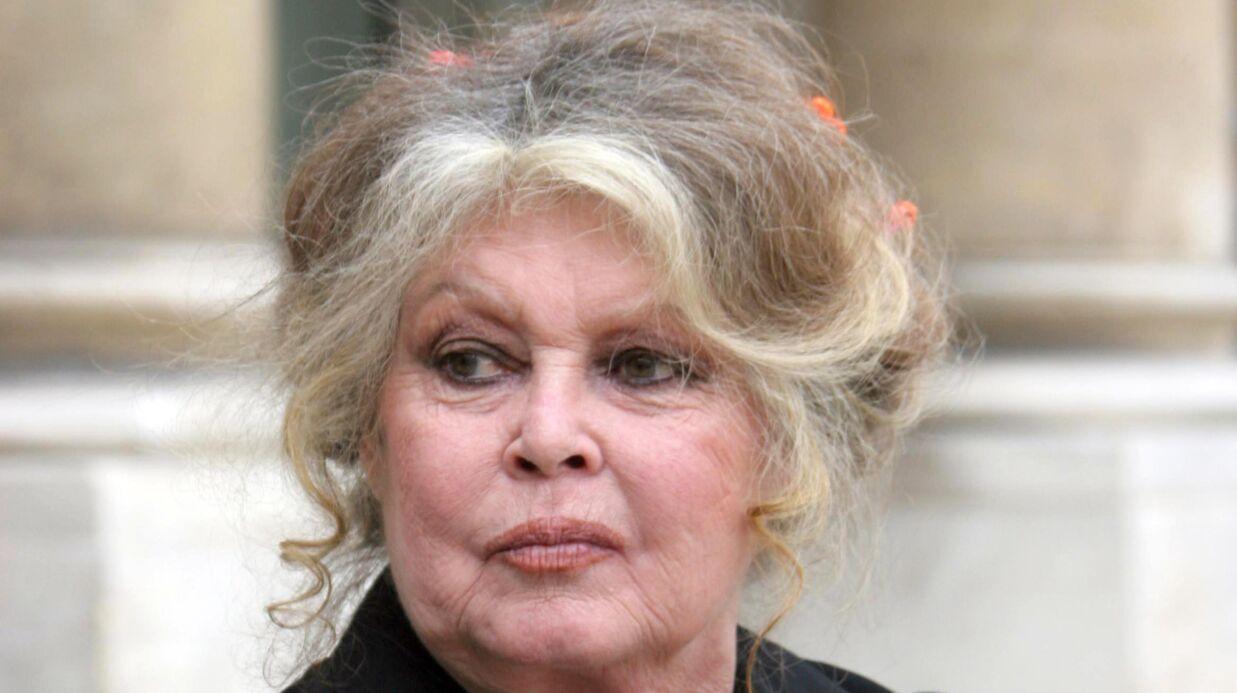 Brigitte Bardot tweete sur les attentats et déclenche une polémique