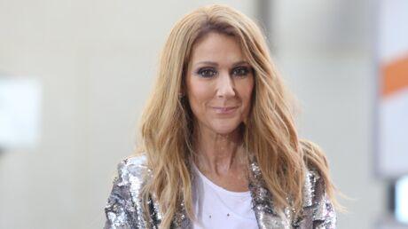 VIDEO Céline Dion s'arrête en plein concert pour une demande en mariage