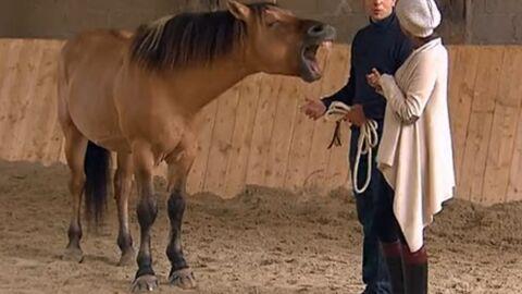 La production de L'amour est dans le pré défend Thomas, accusé de cruauté envers son cheval