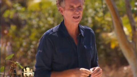 TF1 annonce le retour de Koh-Lanta pour 2014