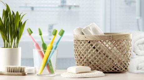 TePe: L'incontournable en hygiène bucco-dentaire!