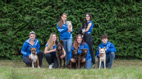Cani-gourmand la marque de friandises pour chiens développe des activités dédiées au bien être canin
