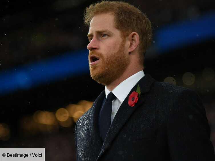 « Ferme-la! » : le prince Harry violemment attaqué par un célèbre chanteur britannique